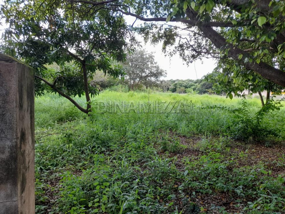 Comprar Rural / Chácara em Uberaba apenas R$ 250.000,00 - Foto 2
