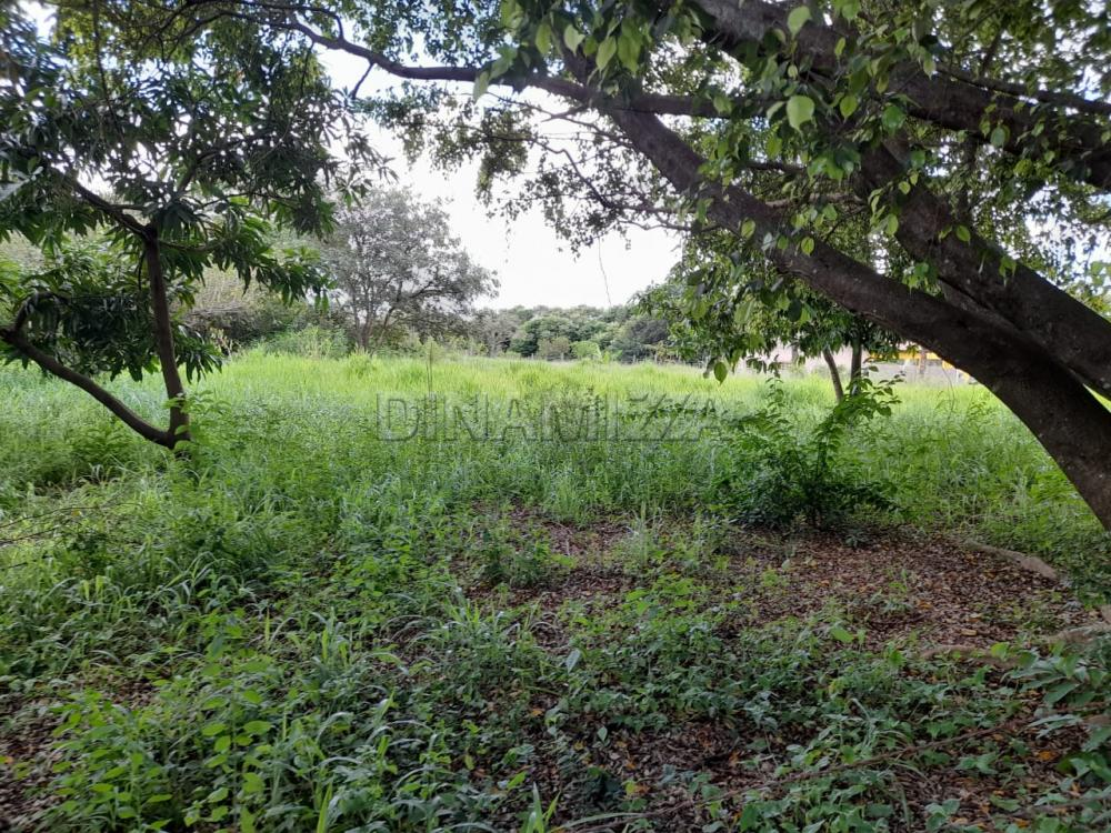 Comprar Rural / Chácara em Uberaba apenas R$ 250.000,00 - Foto 4