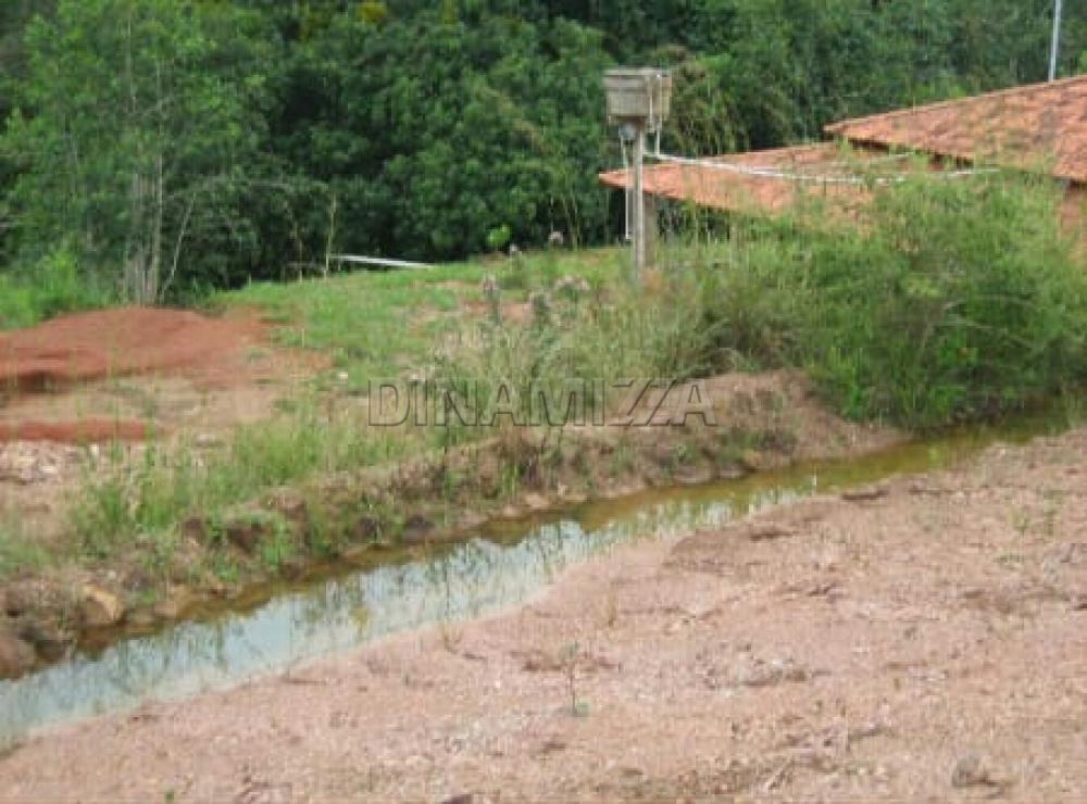 Comprar Rural / Chácara em Coromandel apenas R$ 160.000,00 - Foto 4