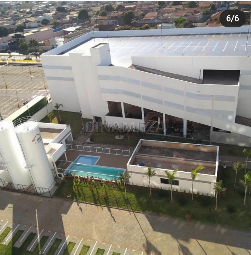 Alugar Apartamento / Padrão em Uberaba R$ 700,00 - Foto 4