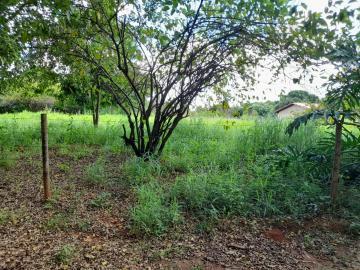Rural / Chácara em Uberaba , Comprar por R$250.000,00