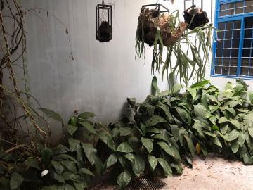 Alugar Casa / Padrão em Uberaba R$ 8.000,00 - Foto 4